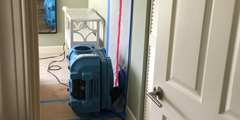 Mold Remediation in Florida