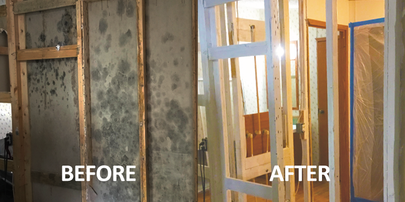 Mold Restoration Boca Raton Before After Image Erica S