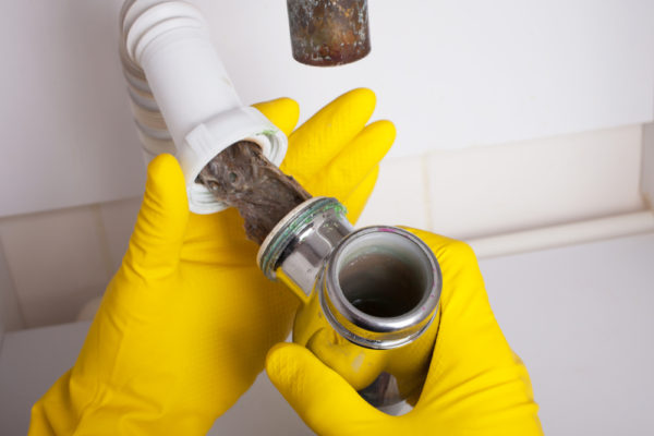 Coral Springs Drain Cleaning