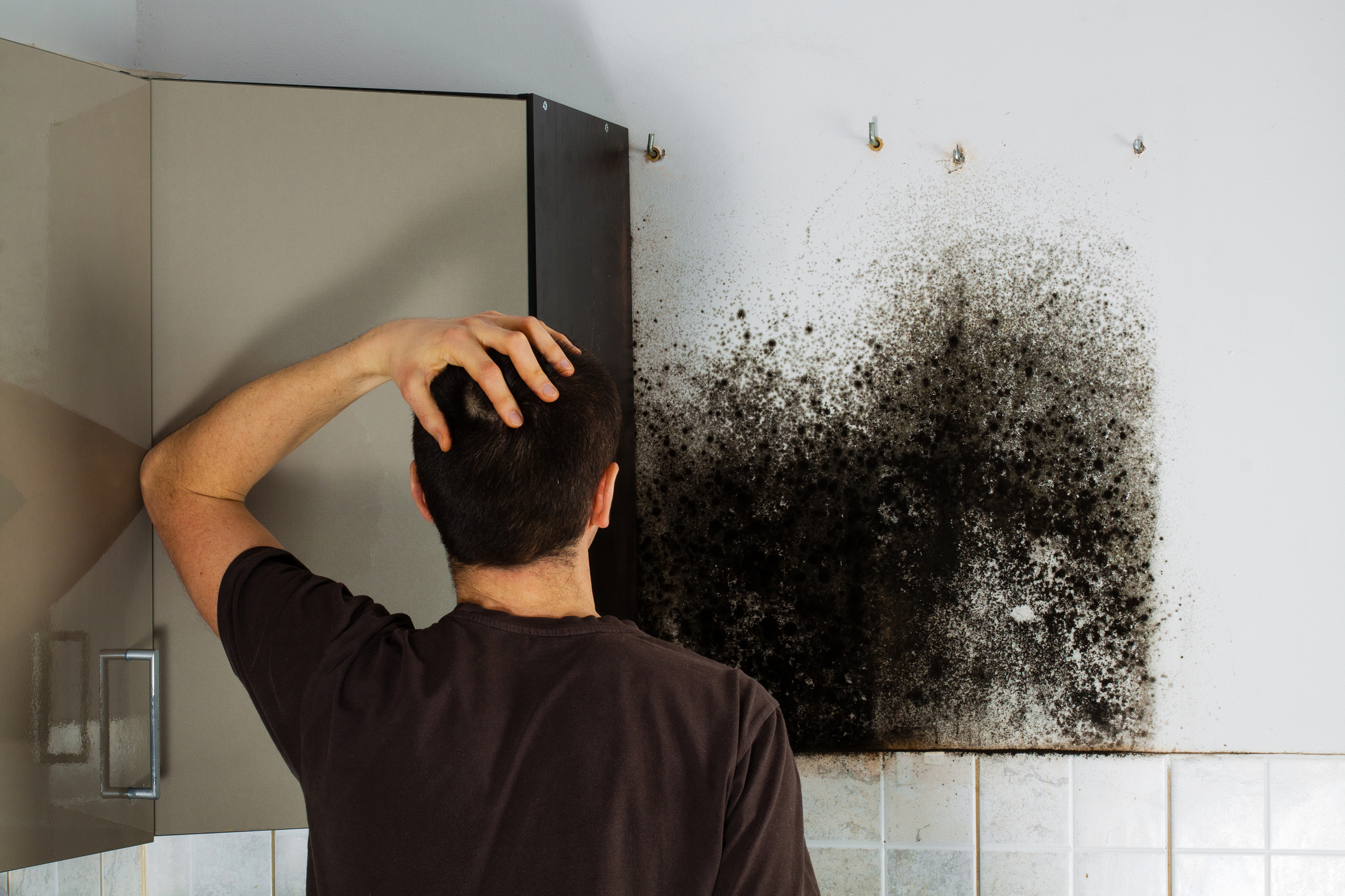 West Palm Beach Mold Removal
