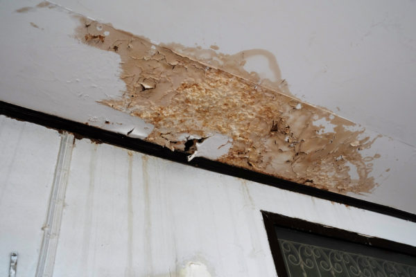 Water Damaged wall